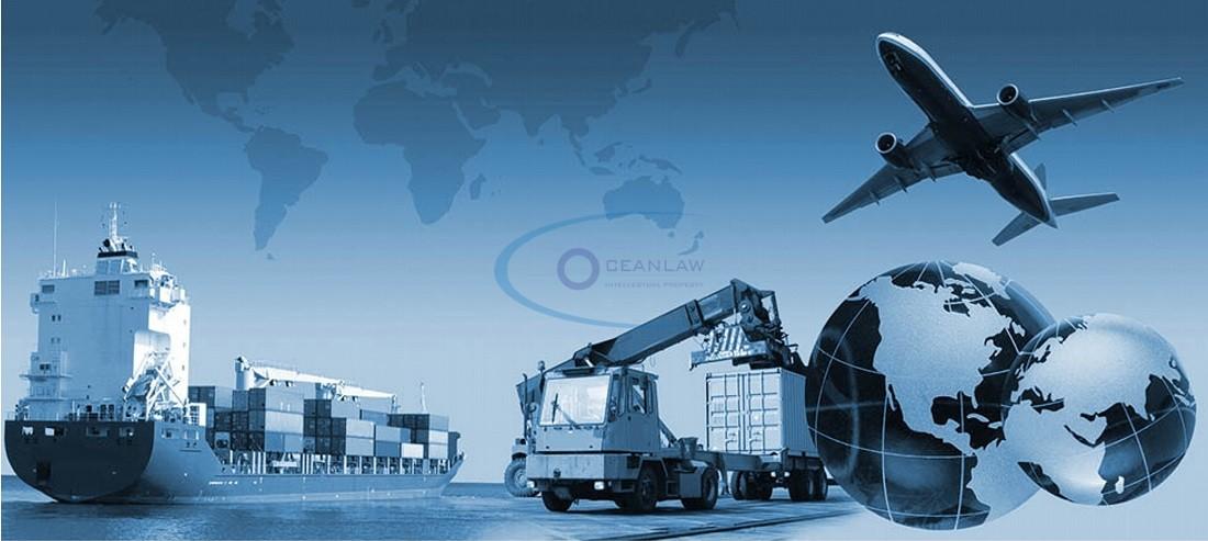 Mẫu giấy phép kinh doanh vận tải đa phương thức