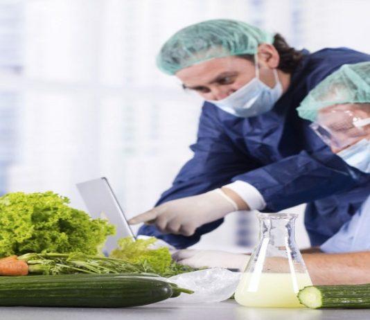 dịch vụ cấp giấy chứng nhận an toàn thực phẩm