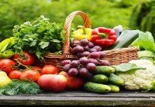 giấy chứng nhận tập huấn vệ sinh an toàn thực phẩm