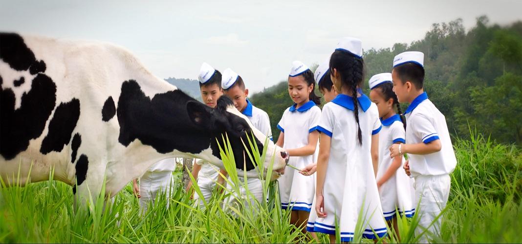 Xin giấy phép quảng cáo sữa