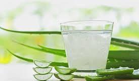 công bố nước đống chai nha đam